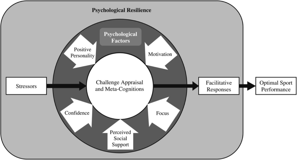 positive psychology and performance appraisals Performance appraisal: method # 4 graphic rating scales: the rating scale is a form on which the manager simply checks off the employee's level of it is a combination of the rating scale and critical incident techniques of employee performance evaluation in psychology research on behaviourism.