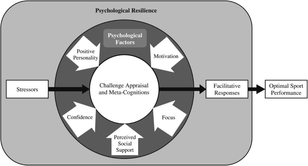 resiliencefigure